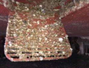 vessel 1 sea chest
